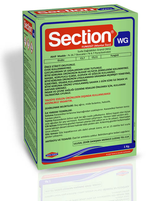 SECTION WG