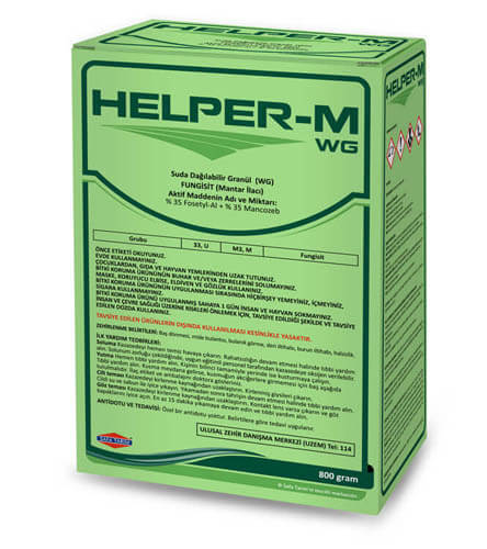 HELPER-M  WG